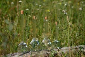 Alkeemialaboris valminud hüdrosoolid on osake loodusest