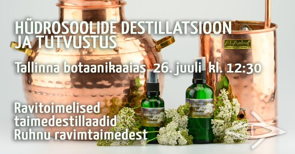 Hüdrosoolide destillatsioon ja tutvustus Tallinna botaanikaaias. Ravitoimelised taimedestillaadid Ruhnu ravimtaimedest.